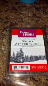 snowy winter woods