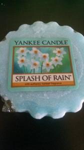 Splash of Rain