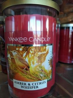 Amber & Citrus Whisper